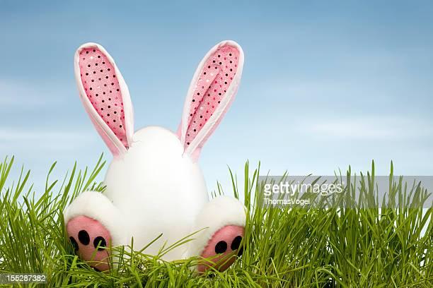 Osterhase sitzt im Gras