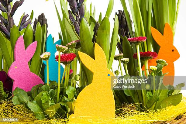 Easter decoration, close-up