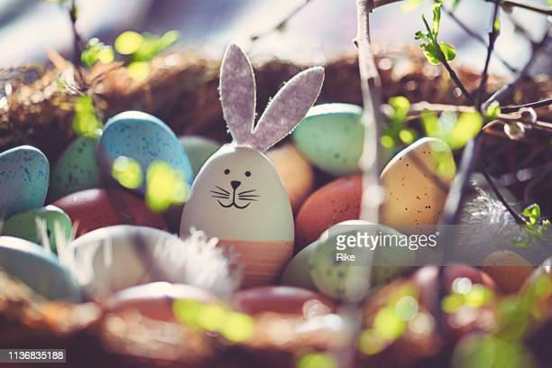 easter decoration with crafted easter bunny in the sunny nest - gras stock pictures, royalty-free photos & images