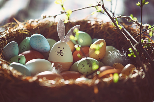 Easter decoration with crafted Easter bunny in the sunny nest 1136835405