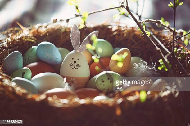 easter decoration with crafted easter bunny in the sunny nest - easter egg stock pictures, royalty-free photos & images