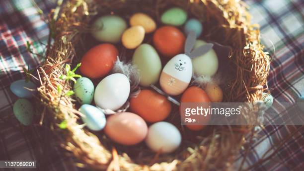 easter decoration with crafted easter bunny in the sunny nest - easter stock pictures, royalty-free photos & images