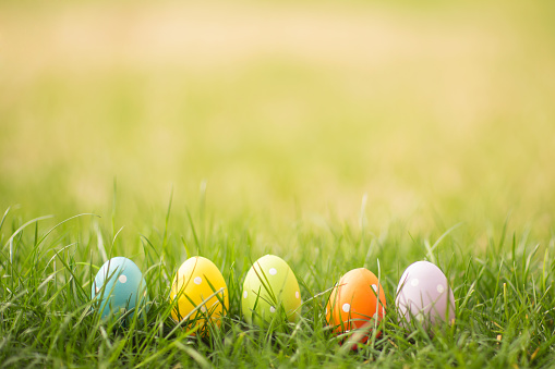 Easter egg background with copy space. 926502474