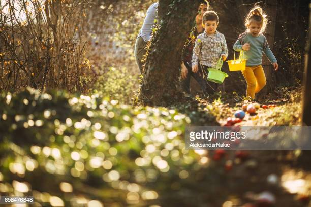 easter egg hunt in nature - easter stock pictures, royalty-free photos & images