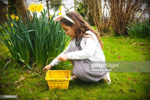easter egg hunt - easter photos stock pictures, royalty-free photos & images