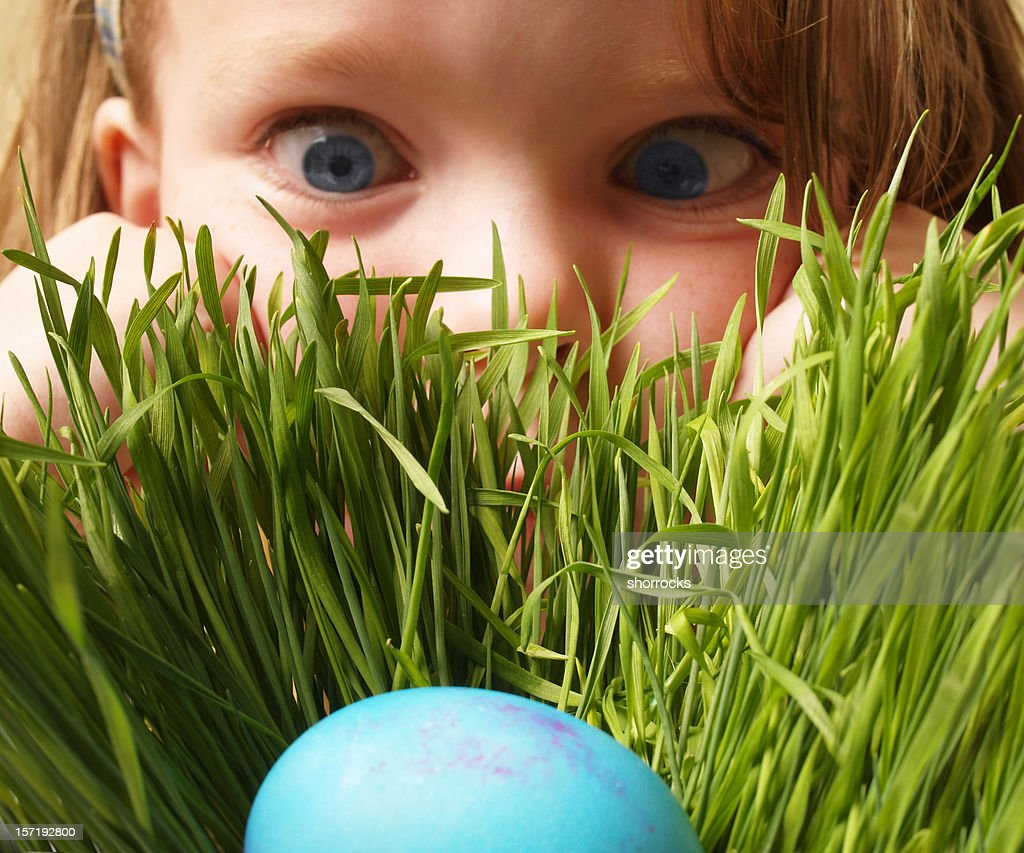 Easter Egg Hunt : Stock Photo