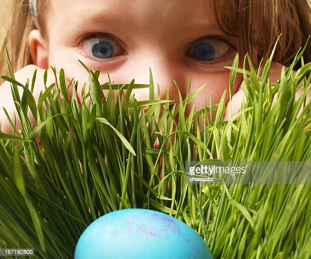 easter egg hunt - easter egg stock pictures, royalty-free photos & images