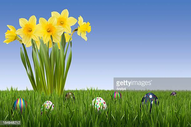 Easter Egg Hunt with Daffodils