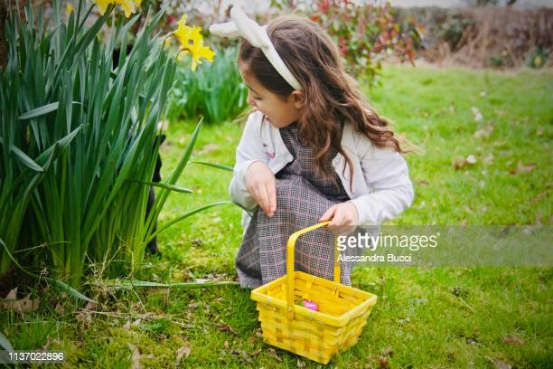 easter egg hunt with surprise - chasse aux oeufs de paques photos et images de collection