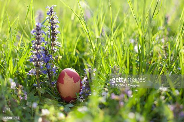 Easter egg in meadow