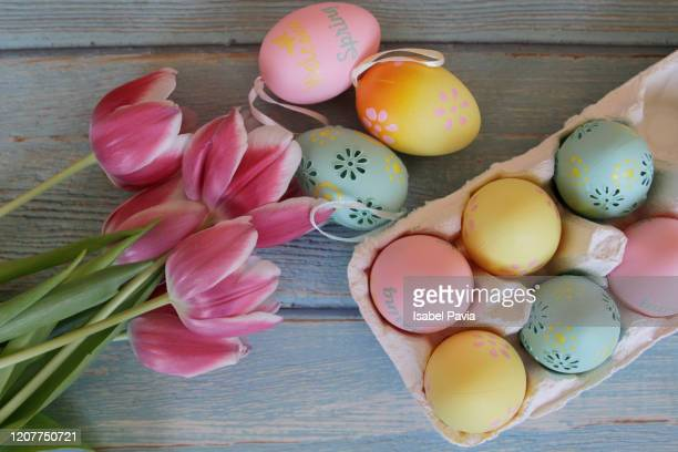 easter eggs and pink tulips. flat lay - easter stock pictures, royalty-free photos & images