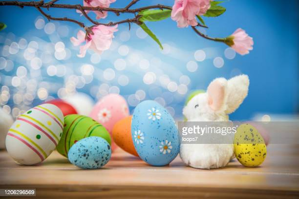 easter eggs and white bunny - easter bunny stock pictures, royalty-free photos & images