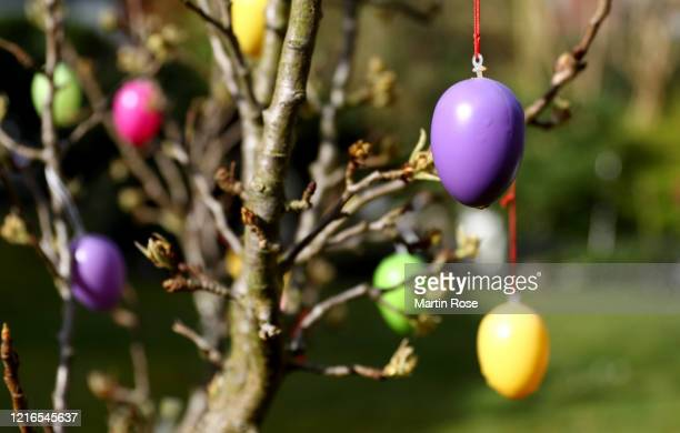 Easter eggs are seen in bush in a back yard during the coronavirus crisis on March 03 in Tornesch near Hamburg, Germany. The coronavirus and the...