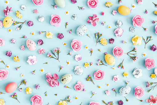 Easter eggs, colorful flowers on pastel blue background. Easter, spring concept. Flat lay, top view 1136116781