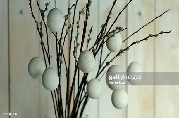 Easter eggs hanging from pussy willow twigs, close-up