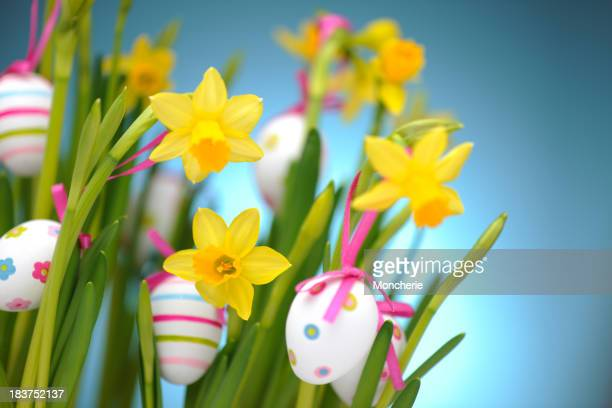 Easter eggs hanging on daffodils