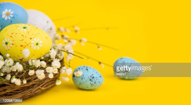 easter eggs in a nest on yellow background - italian easter stock pictures, royalty-free photos & images