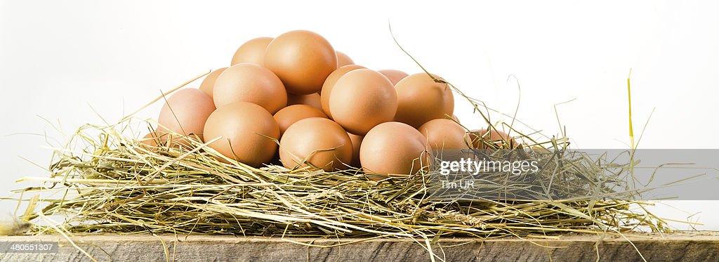 Huevos de Pascua en nest en tablas de madera rústica.  Fondo blanco : Foto de stock