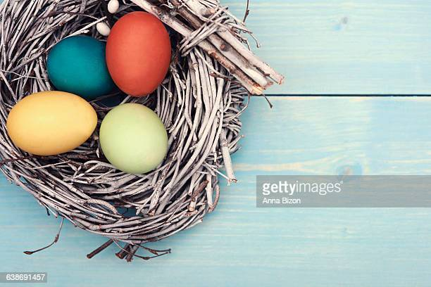 Easter eggs in the nest. Debica, Poland