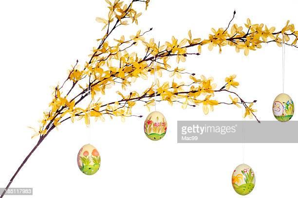 Ostern Eier auf dem Zweig