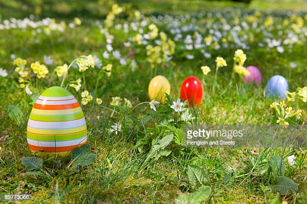 easter eggs, spring flowers in grass - chasse aux oeufs de paques photos et images de collection