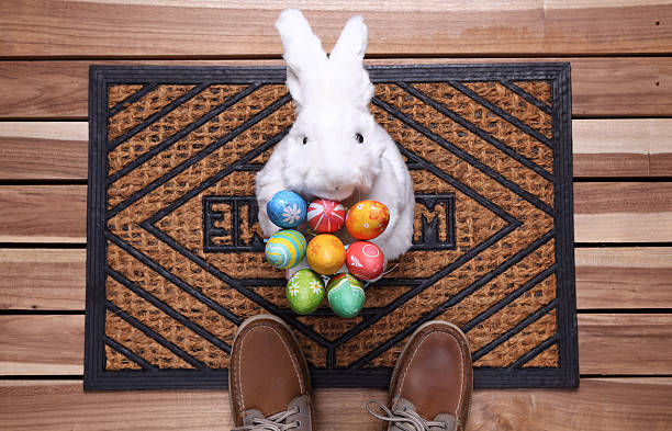 Free easter bunny images pictures and royalty free stock photos easter gift negle Gallery
