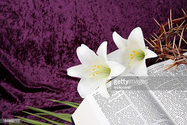 easter, good friday and palm sunday - palm sunday photos stock pictures, royalty-free photos & images