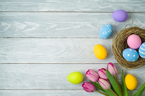 Easter holiday background with easter eggs in bird nest and tulip flowers on wooden table 1134704420