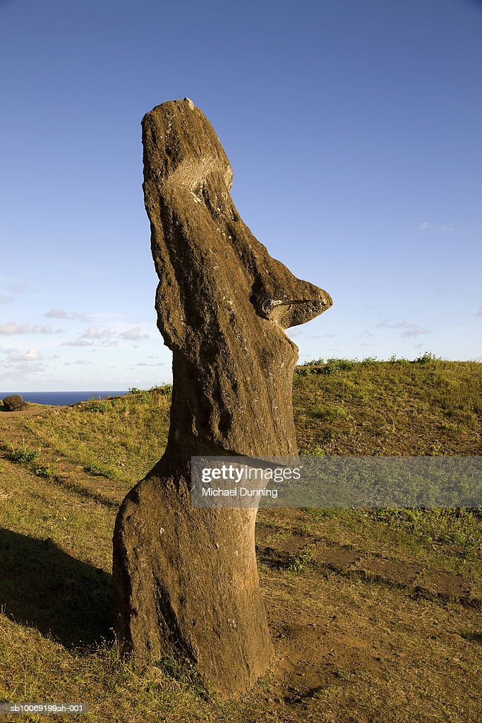 Easter Island, Rano Raraka, ancient Moai statue on hillside : Stockfoto
