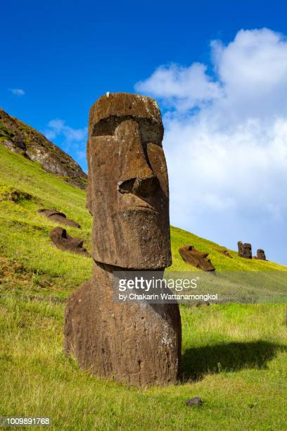 easter island - the moai collection in rano raraku where most of moai in the easter island were originated. taken in a sunny day with clear sky and nice weather condition. - rano raraku stock pictures, royalty-free photos & images