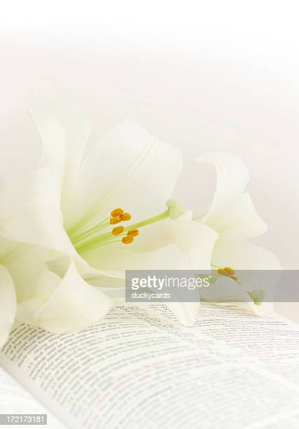 easter lilies on a kjv bible - easter religious stock pictures, royalty-free photos & images