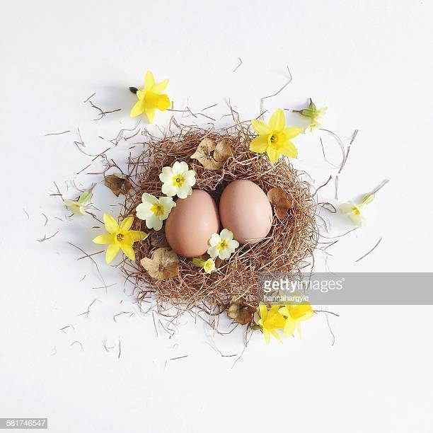 Easter nest with eggs and spring flowers