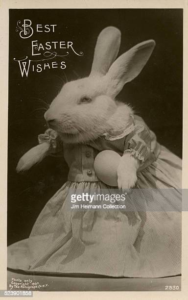 Easter postcard featuring photo of rabbit in dress holding egg