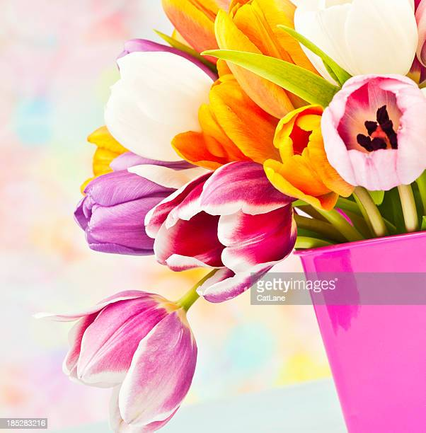 Easter Tulip Bouquet in Pink Pail