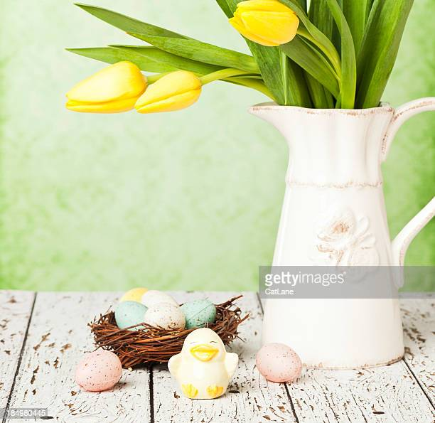 Easter Tulips and Bird's Nest