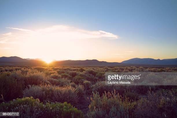Eastern Sierra Desert Sunset