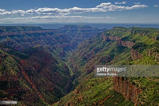 CONTENT] Easy to see how the Grand Canyon got its name with these spectacular aerial views Standing on the rim is one thing awe inspiring to say the...