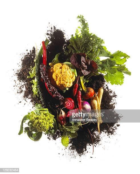 Eat the rainbow, vegetable still life