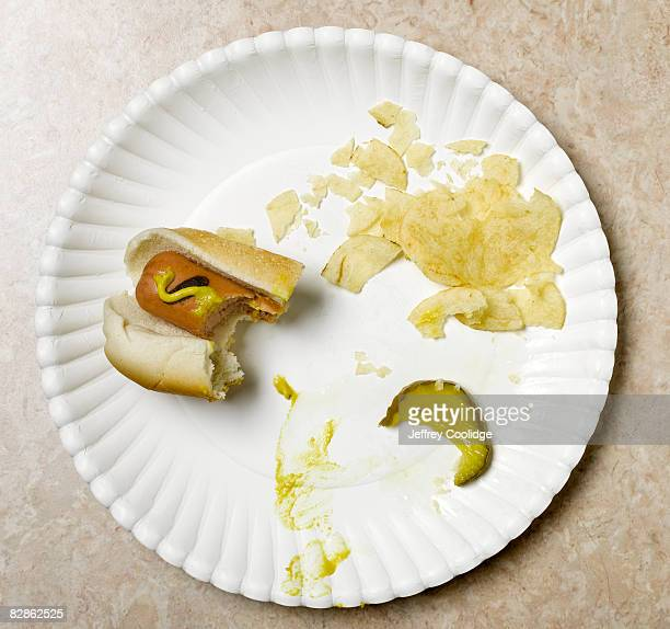 eaten hot dog on paper plate