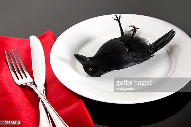 eating crow for dinner - crow bird stock photos and pictures
