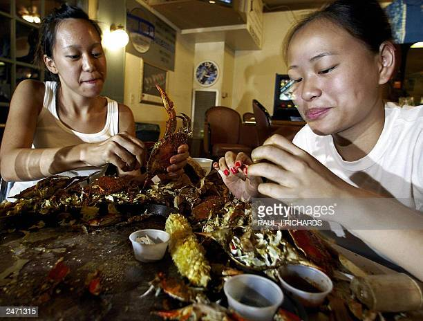 Eating steamed Blue Crabs can be a bit messy as Donna Nguyen from Herndon Virginia and her friend My Tran from Falls Church Virginia illustrate...