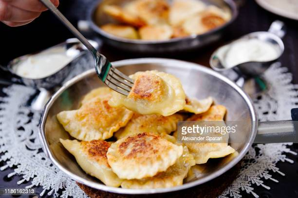 eating traditional polish dumplings pierogi with fork - polish culture stock pictures, royalty-free photos & images