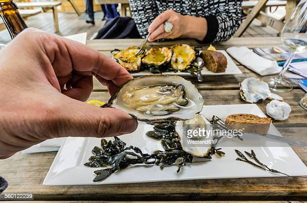 eating zeeland oysters in a restaurant - oyster shell stock photos and pictures