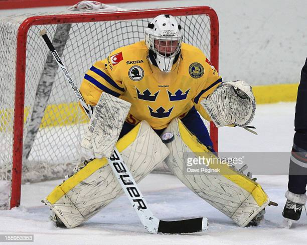 Ebbe Sionas of Sweden eyes the puck on a shot by Team USA during the U-18 Four Nations Cup on November 9, 2012 at the Ann Arbor Ice Cube in Ann...