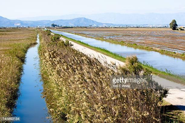 ebro delta, catalonia northern spain - ebro river stock photos and pictures