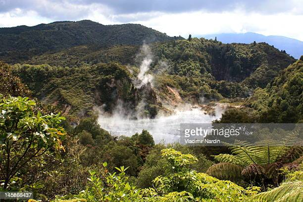 echo crater in waimangu - new zealand volcano stock photos and pictures