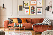 Eclectic living room interior with comfortable velvet corner sofa with pillows