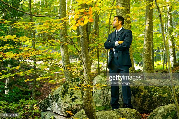 eco businessman - the four elements stock pictures, royalty-free photos & images