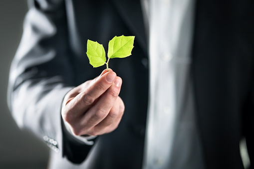 Eco friendly environmental lawyer or business man. Sustainable development, climate change, ecology and carbon footprint concept. Environment, energy or conservation laws. Global pollution. 1124732884