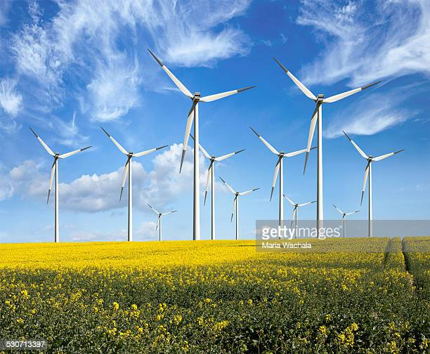 eco power wind turbines - windmills stock photos and pictures